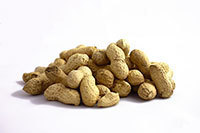 Peanuts, a common allergen