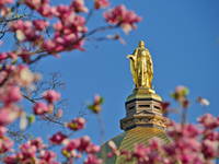 Golden Dome in the spring