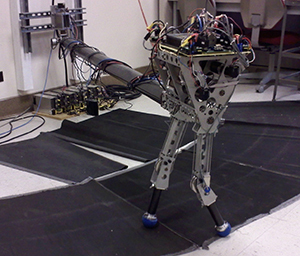 KURMET is a Locomotion and Biomechanics Lab robot that hops