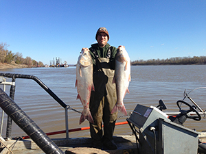 Two silver carp on the Mississippi River in Missouri. Photo by Sara Tripp/Missouri Department of Conservation. Courtesy of University of Michigan.