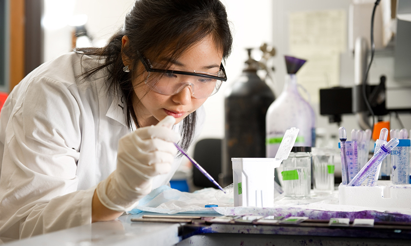 Undergraduate Sue Yi does biology research in Galvin Life Sciences