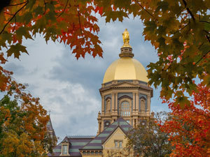 Golden Dome Fall