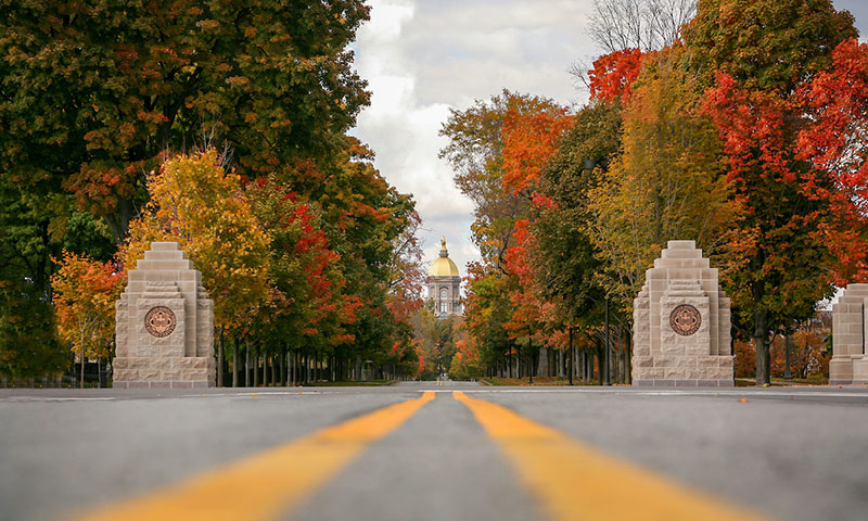 Notre Dame Avenue Entrance