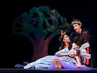 Robinson Shakespeare Company