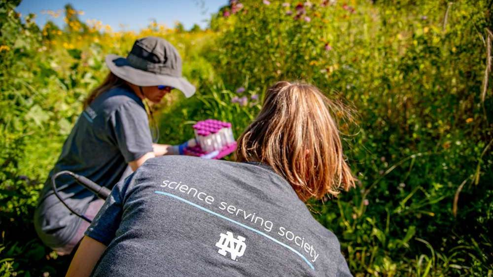 Christina Murray '20 and graduate student Shannon Speir-Alderman test water at the Notre Dame Linked Experimental Ecosystem Facility, or ND-LEEF. Photo by Matt Cashore/University of Notre Dame.