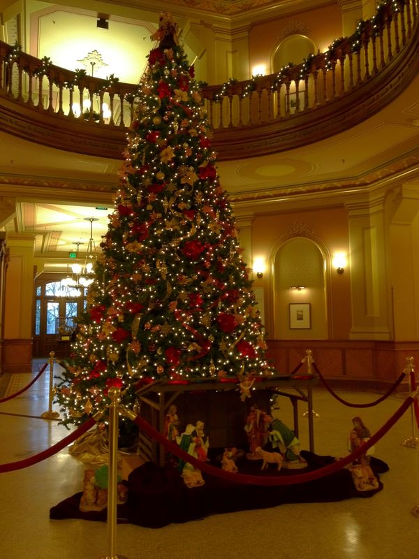 Main Building Christmas Tree